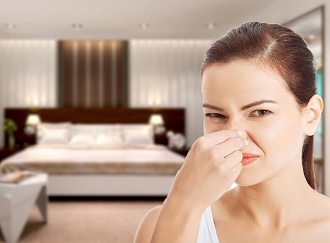 cách khử mùi hôi trong phòng kín